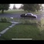 Truck chases kids through park and nearly runs one over