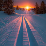 Snow tracks in the sunset