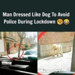 Man dressed like a dog to avoid police during lockdown
