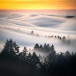 Sea of clouds rolling at Mt Tamalpais, San Francisco, CA 😮🥰😍