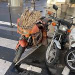 Best bike 😅