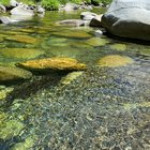 Relax into the beautiful river