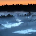 Cool bog at dusk, Estonia