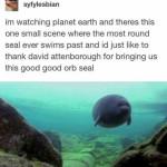 Thank you David Attenborough