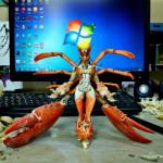 Quintessa the lord of crabs. Armor enhancement +3000