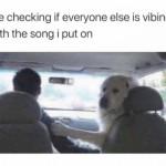 Everyone has to be vibing