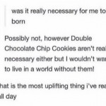 Comfort food double chocolate chip cookies exist 🍪