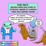 A Dam Fine Fun Fact About Beavers