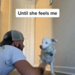The way this guy wakes his deaf and blind dog is just heartwarming
