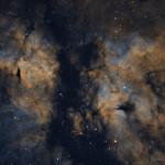 IC 1318 - close up of the Sadr region