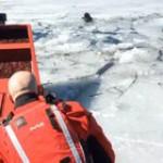 Dog Rescued at Deer Creek Reservoir, Utah
