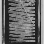 Tapeworm from a human - 382 cm (12.5 ft) long