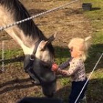 Horsey tutorial # 1: How to tame your little human