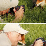 Fox checks it's portrait
