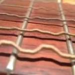 Guitar strings being strung