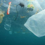 Plastic in the ocean: The facts, effects and new EU rules