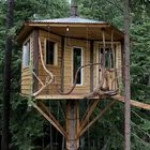 How to reach the treehouse