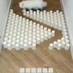 Parkoir kitty