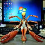 Lobster angel