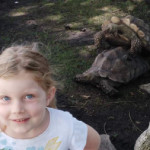 """Kid wanted to take a photo with the """"dancing turtles"""" at the zoo"""