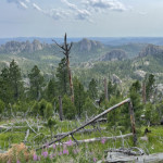Black Hills, South Dakota OC