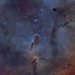 IC 1396 - The Elephant Trunk Nebula 🐘
