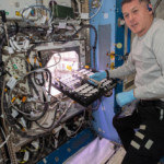NASA astronauts are spicing up the International Space Station — by growing chile peppers on board for the first time