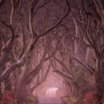 'The Dark Hedges' in Northern Ireland