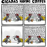 cicadas having coffee