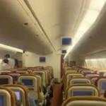 Bat flies through the cabin of a flight to New Jersey