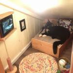 Wyatt in his little room
