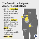 Australian doctors new approach to shark bite first aid