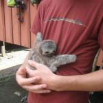 Yes! Cuddles! My favorite!