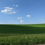 Went for a drive the other day and found Windows XP - Montfort, Wisconsin