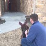 Parents surprise daughter with dog she has been caring for at shelter 🐕
