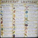 Skyrim ingredients locations. (Credit to u/leeksfreek for making this! )