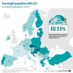 Overweight adult population
