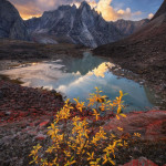 Wild Awakening - Alaska
