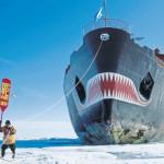 A huge shark on a dock 🛳️