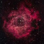 First time capturing the Rosetta Nebula (NGC 2244)
