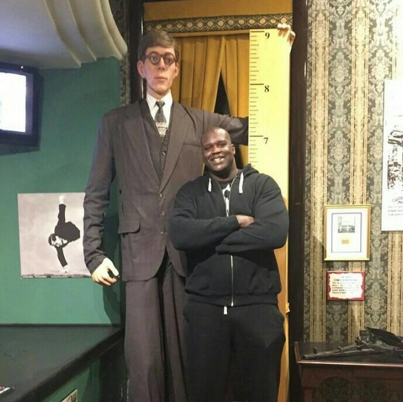 """Shaquille O'Neal (7'1"""") next to a cutout of the tallest recorded human, Robert Wadlow (8' 11"""")"""