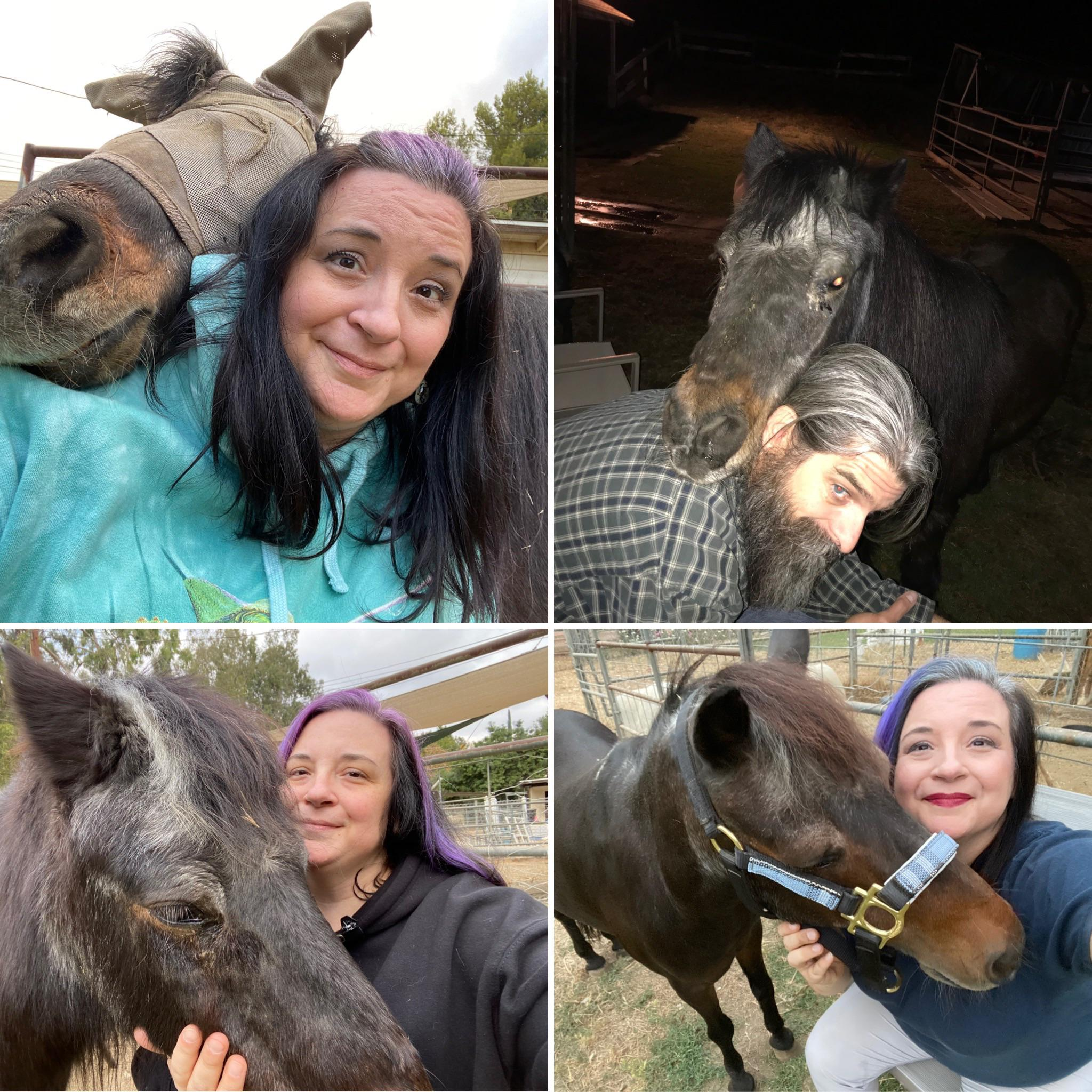 Sweet and affectionate 🐴
