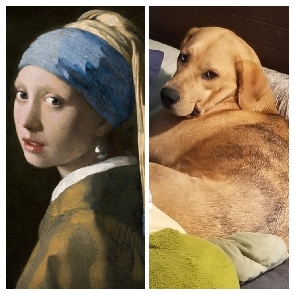 The resemblance 🤭