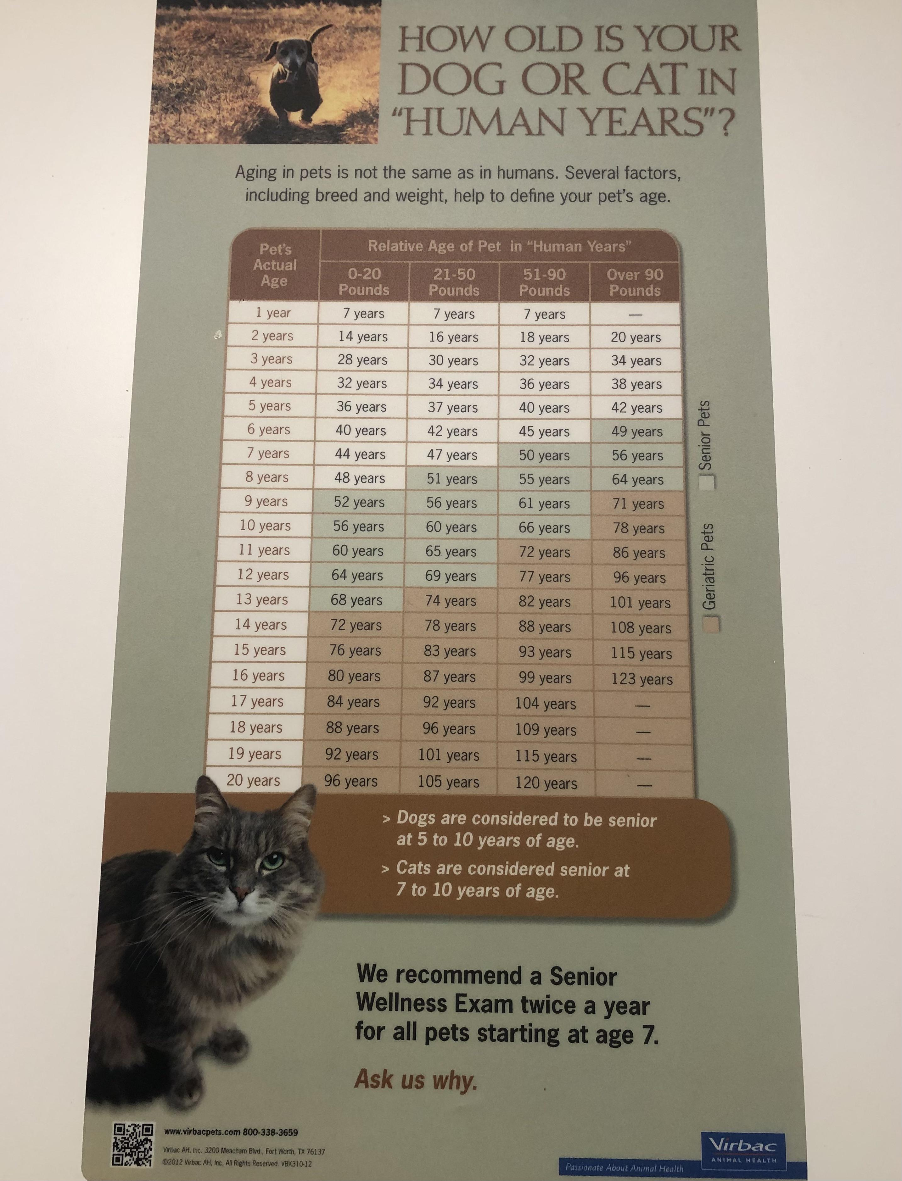Calculate your pets age