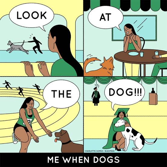 Dogs are life