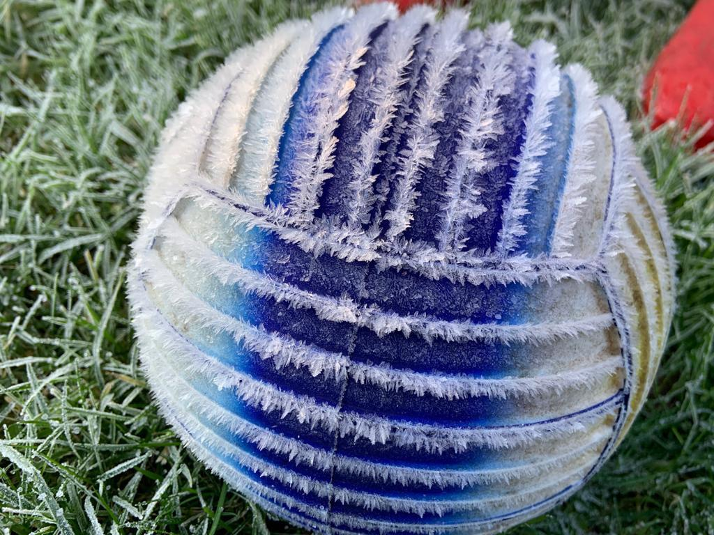 A frozen ball in my garden this morning