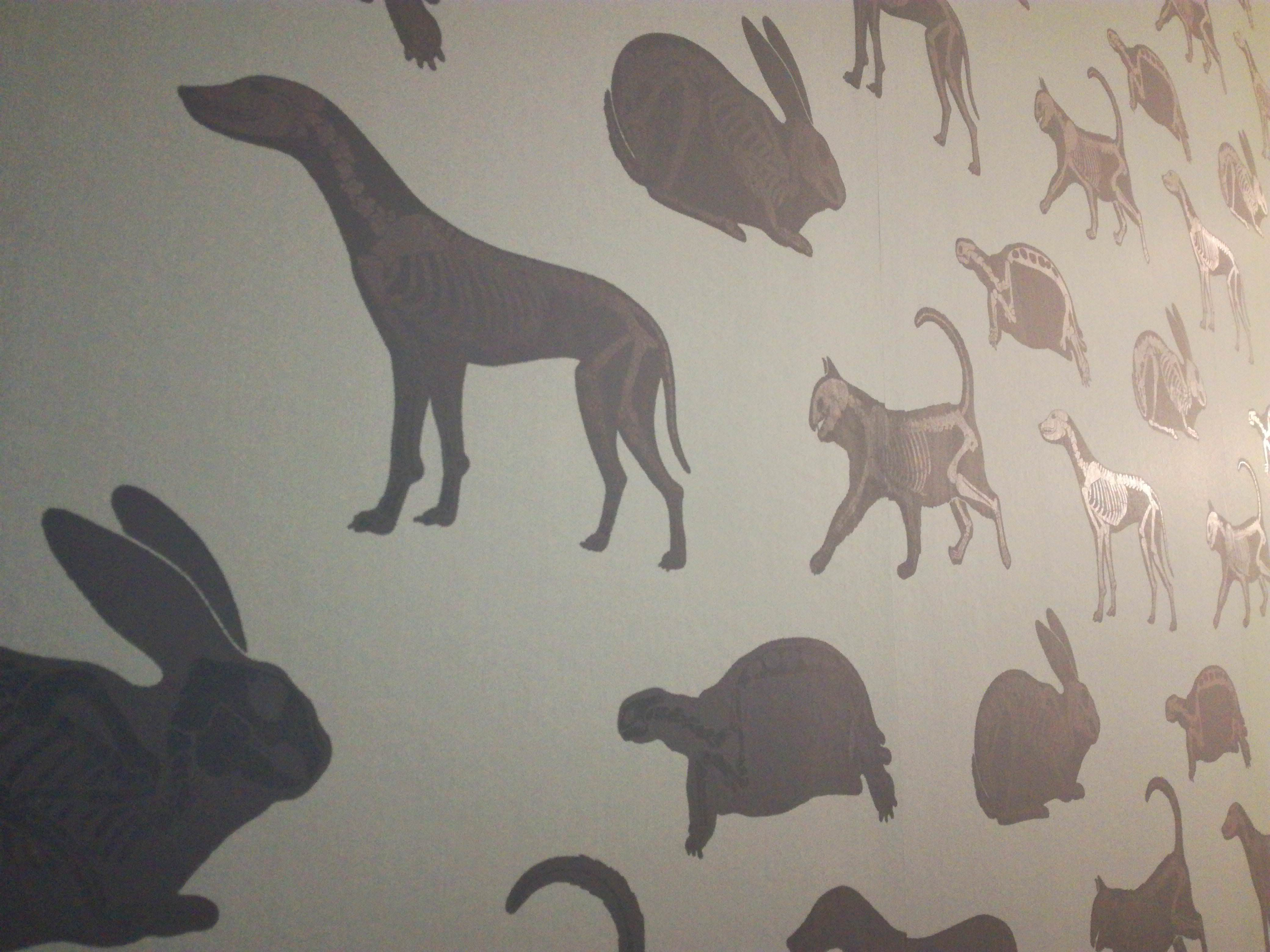 The wallpaper at the vet's has animal silhouettes with shiny skeletons in them