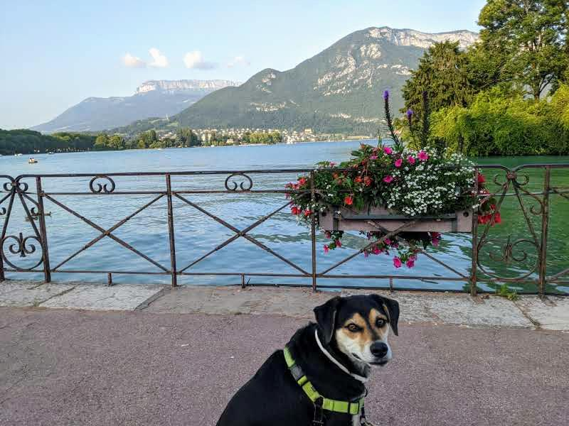 Salut from Lac d'Annecy!