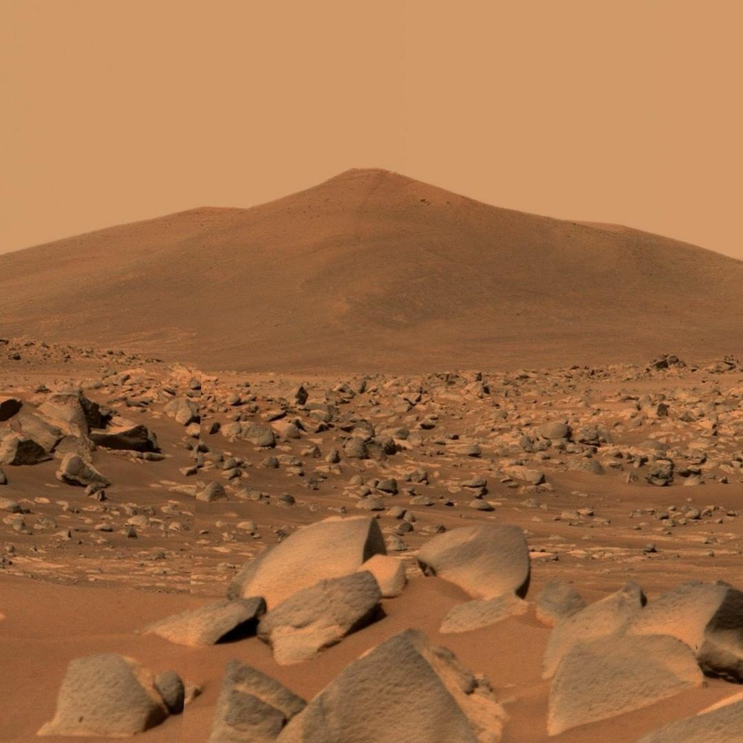 Mars Perseverance Rover captured this image